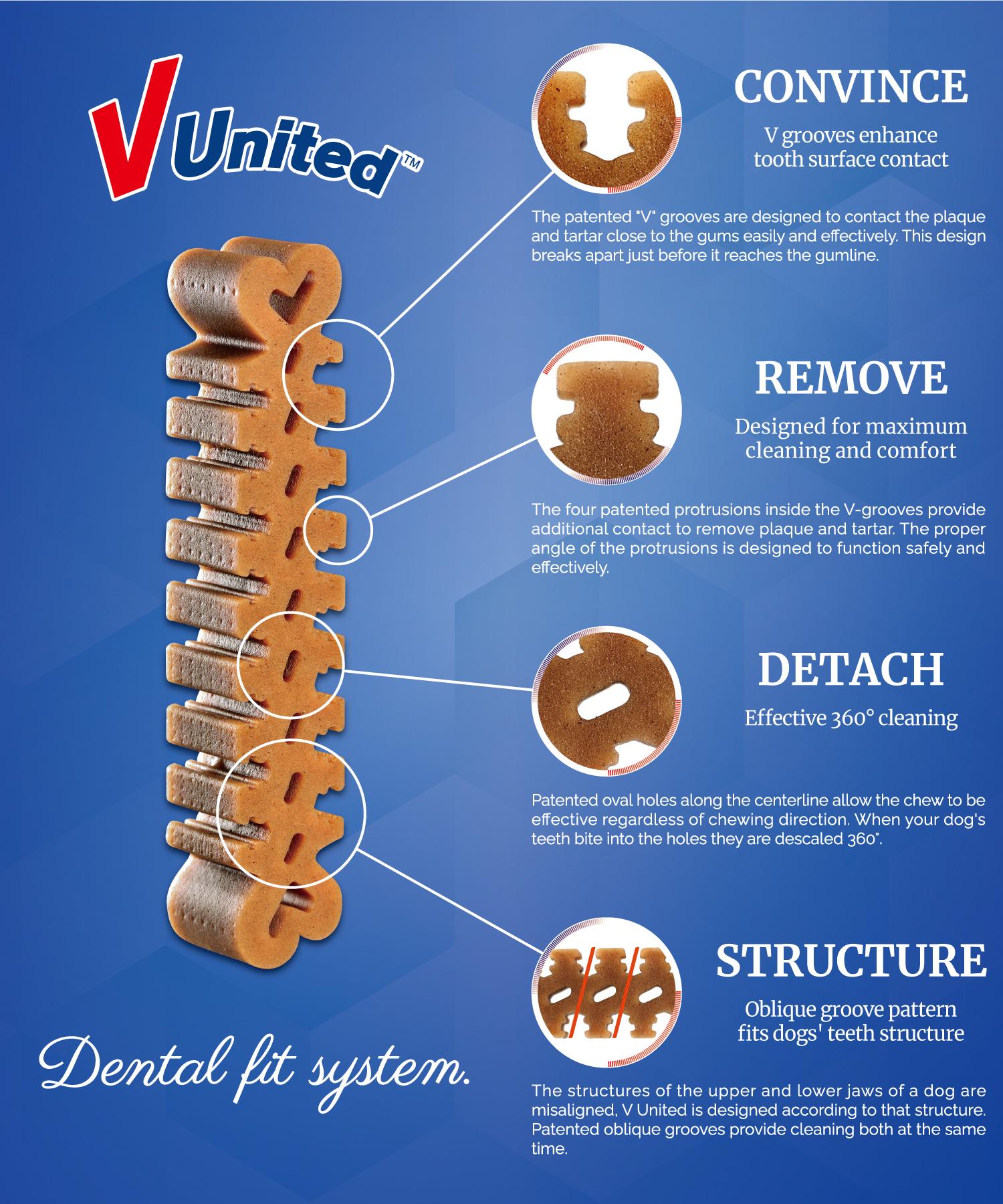 Dental Fit System